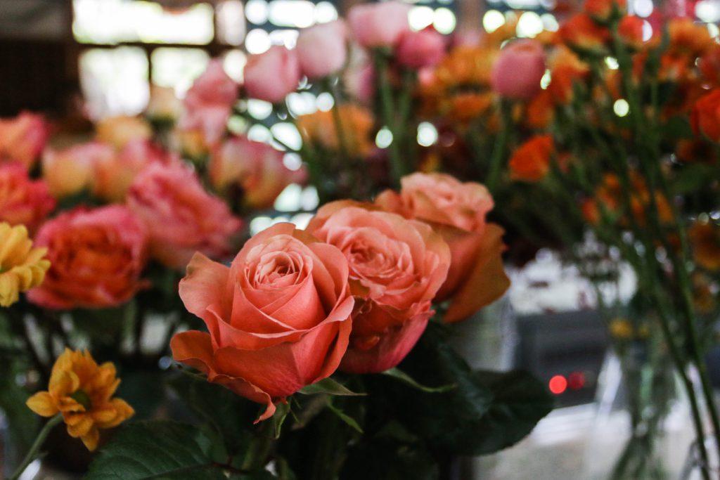 ดอกไม้สีส้ม